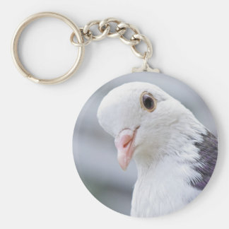 Pigeon Basic Round Button Key Ring