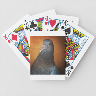 Pigeon Bicycle Playing Cards