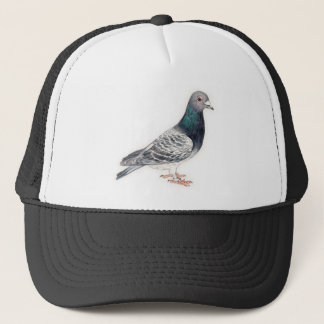 Pigeon Bird Art Hat