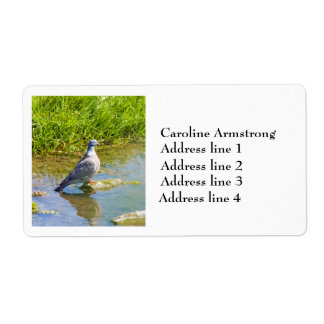 Pigeon bird photo personalized address labels