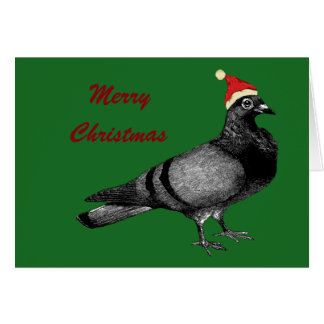 pigeon christmas card