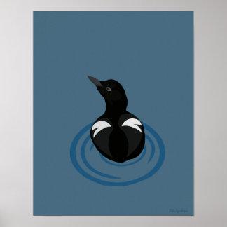 Pigeon Guillemot Art 11x14 Archival Matte Poster