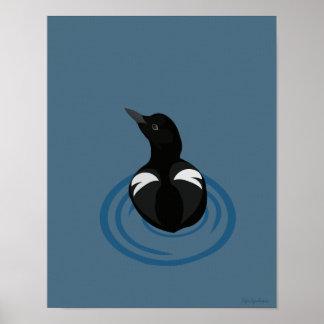 Pigeon Guillemot Vector 11x14 Canvas Poster Print