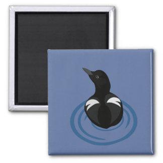 Pigeon Guillemot Vector Art Magnet