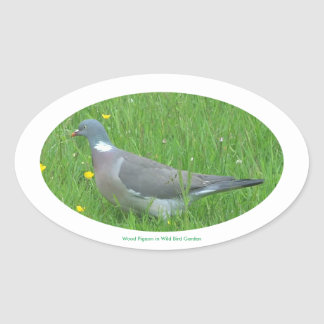 Pigeon image for Oval Stickers, Glossy Oval Sticker