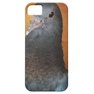 Pigeon iPhone 5 Cover