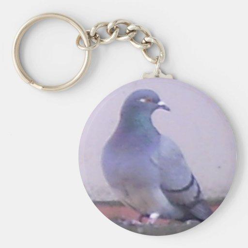 Pigeon Key Chains