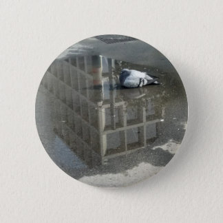 Pigeon Mirror Water 6 Cm Round Badge