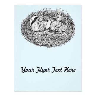 Pigeon Nest Babies Flyers