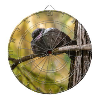 pigeon on lake dartboard