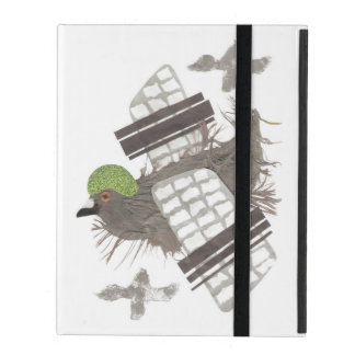 Pigeon Plane 2/3/4 I-Pad Case