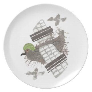 Pigeon Plane Melamine Plate