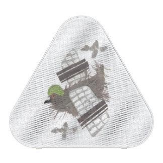 Pigeon Plane Pieladium Speaker