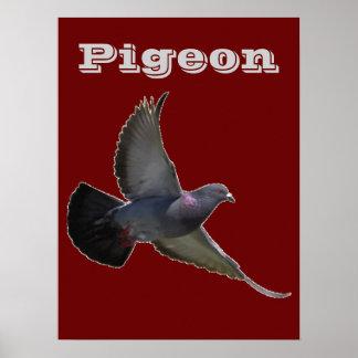 Pigeons Bird Animals Nature Destiny Peace Love Art Poster