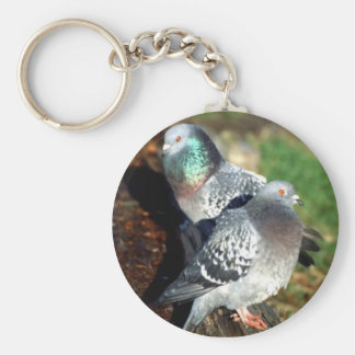 Pigeons Day Dreaming Basic Round Button Key Ring