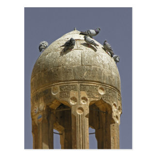 Pigeons on a minaret postcard
