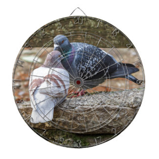 pigeons on lake dartboard