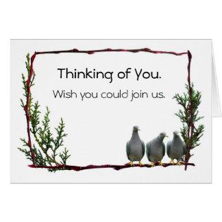 Pigeons on Twig Card