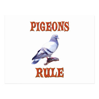 Pigeons Rule Postcard