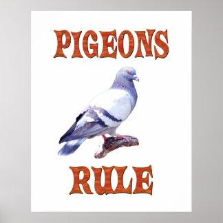 Pigeons Rule Poster