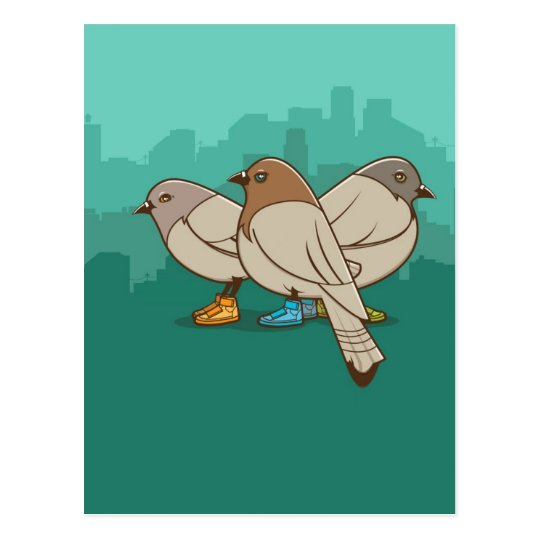 Pigeons With Sneakers Funny Photo Graphic Design Postcard