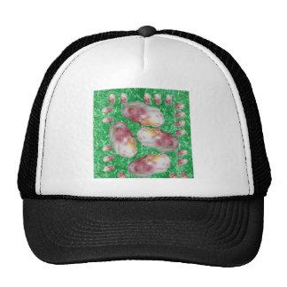 Piggy Hats