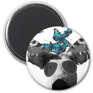 Piglet And Butterfly Pig Animal 6 Cm Round Magnet