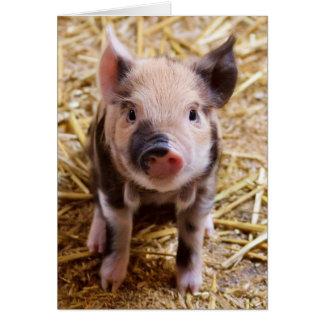 Piglet Card