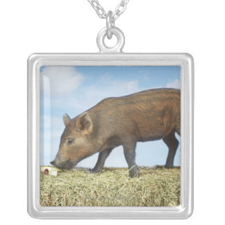 Piglet Eating Silver Plated Necklace