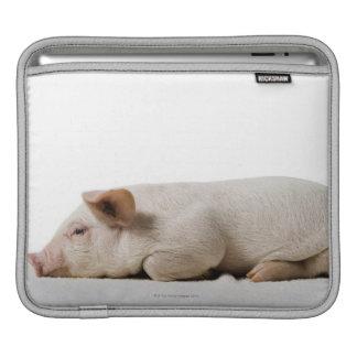 Piglet Lying Down Profile iPad Sleeve