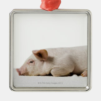 Piglet Lying Down Profile Silver-Colored Square Decoration