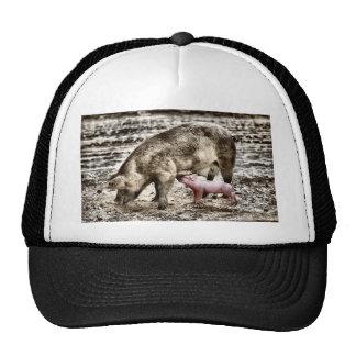 Piglet Mesh Hat