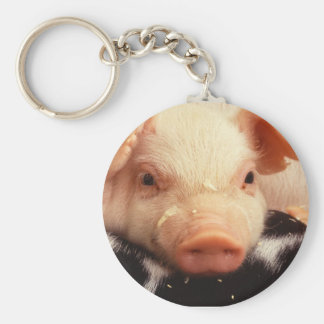 Piglet Pig Adorable Face Snout Basic Round Button Key Ring
