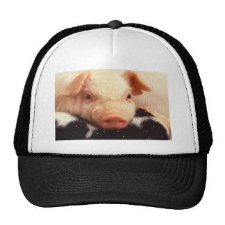 Piglet Pig Adorable Face Snout Trucker Hat