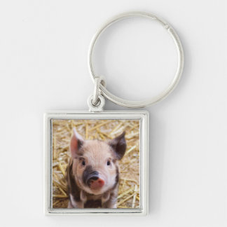 Piglet Silver-Colored Square Key Ring