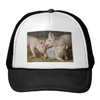 Piglets Ball Cap Hats