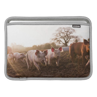 Piglets in Barnyard Sleeve For MacBook Air