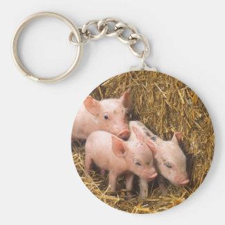 Piglets Keychains