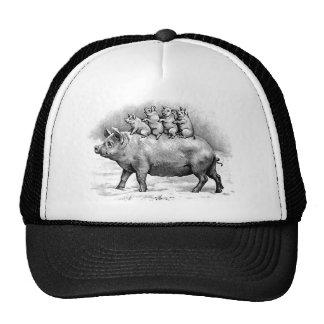 Piglets Ride On Pig Hat