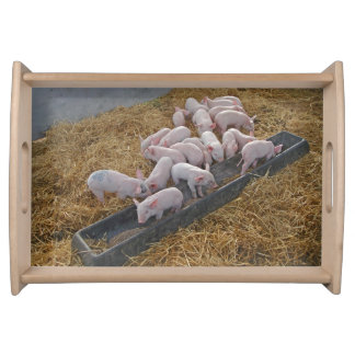 Piglets serving tray