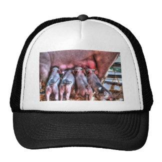 Piglets Suckling Trucker Hat