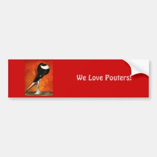Pigmy Pouter Black Pied Bumper Sticker