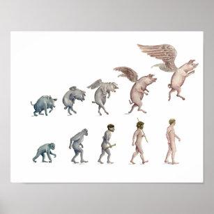 Evolution Pig Art & Wall Décor   Zazzle co uk