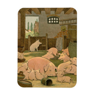 Pigs and Piglets on the Farm Rectangular Photo Magnet