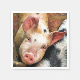 PIGS DISPOSABLE SERVIETTE