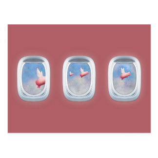 Pigs flying past airplane windows postcard