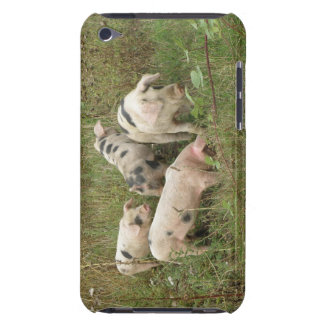 Pigs in a Field  Case-Mate iPod Touch Case