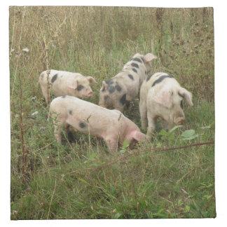 Pigs in a Field Napkin