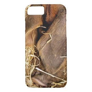 PIGS iPhone 8/7 CASE