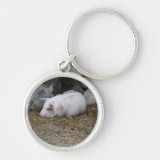 Pigs on The Farm Keychain